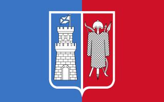 Флаг Ростова на Дону