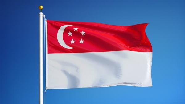Флаг Сингапура - цвета, история возникновения, что обозначает